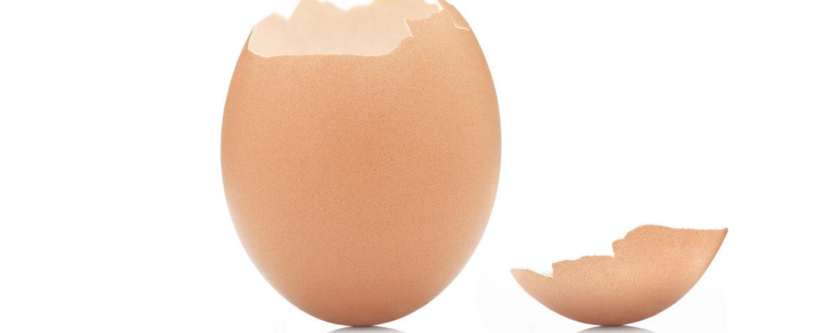 broken eggshell law