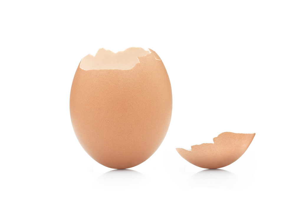 broken eggshell law