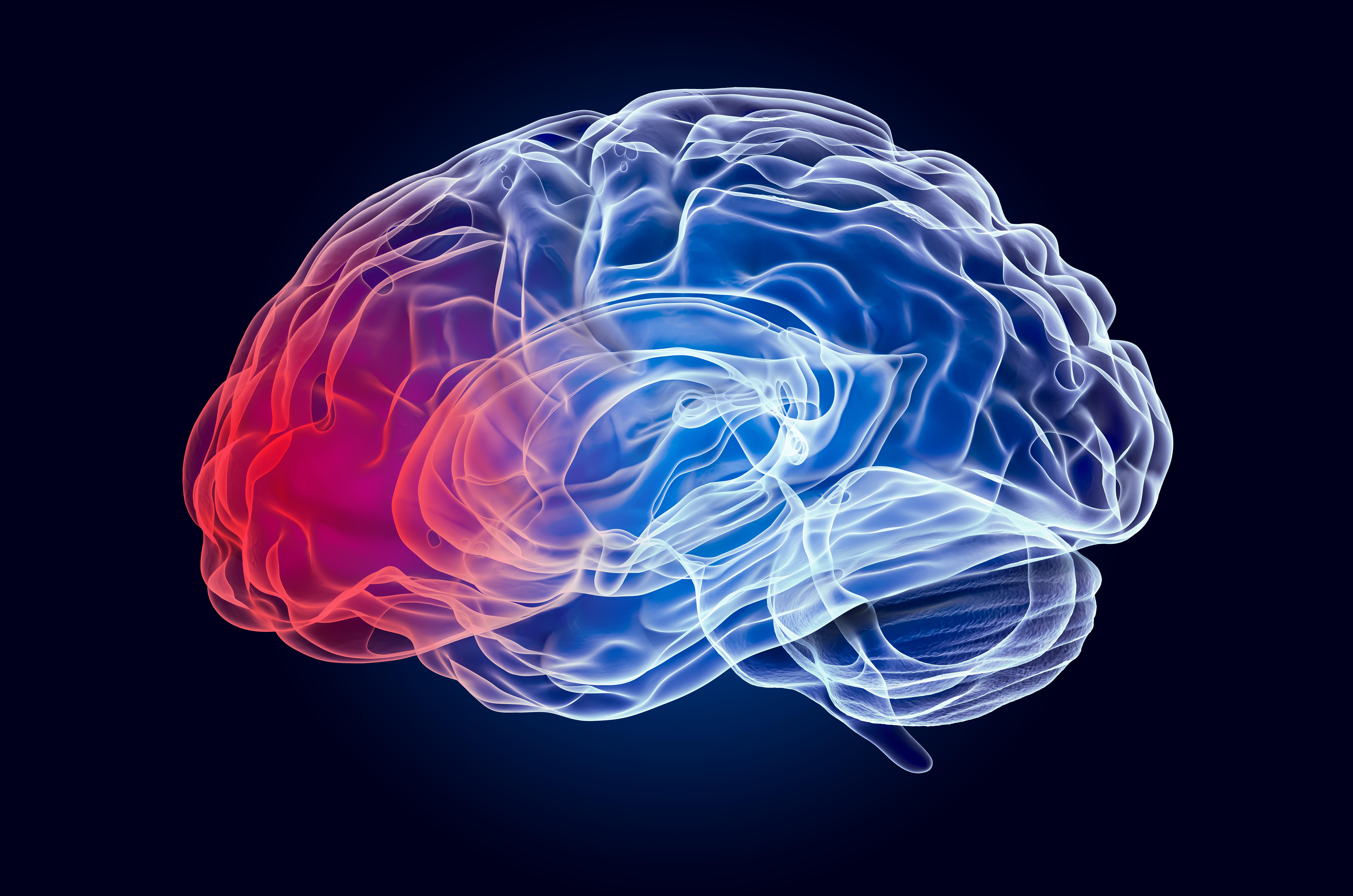 Conozca los Sintomas de las Cerebrales Traumaticas (LCT)